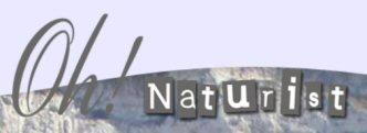 ohnaturist